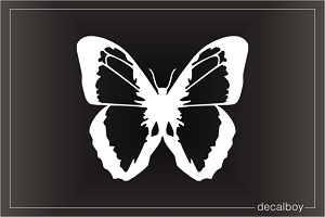 Blue Morpho Butterfly Image Window Decal