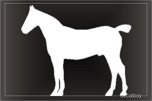 Chincoteague Pony Car Window Decal