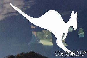 Kangaroo Joey Window Decal