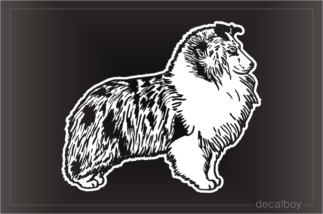 Blue Merle Collie Car Window Decal