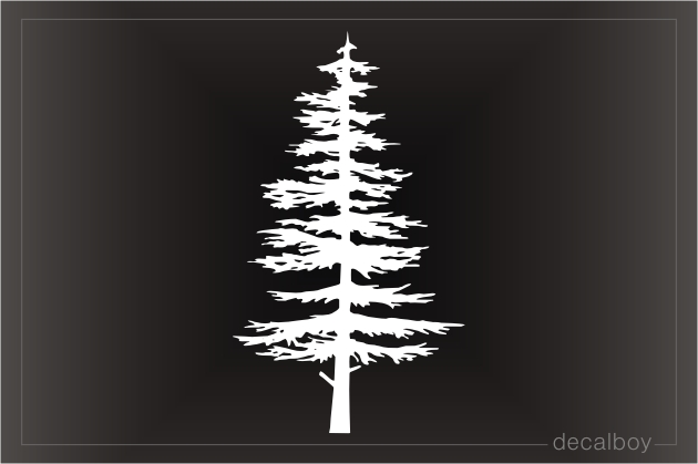 Pinetree Silhouette Decal