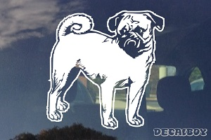 Pug Car Window Decal