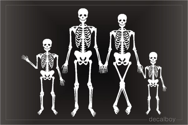 X Ray Skeleton Family Decal