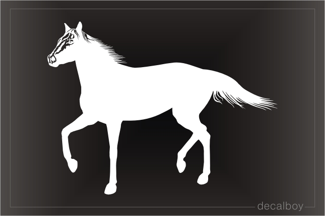 American Quarter Horse Window Decal