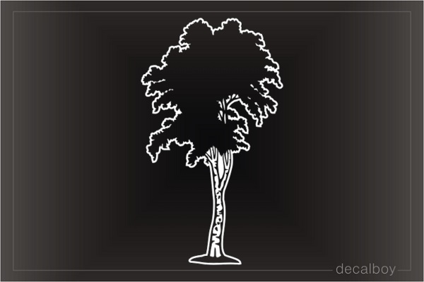 Aspen Tree Window Decal