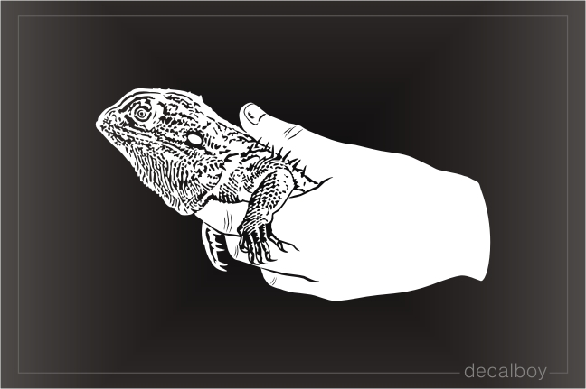 Bearded Dragon Pet In Human Hand Decal