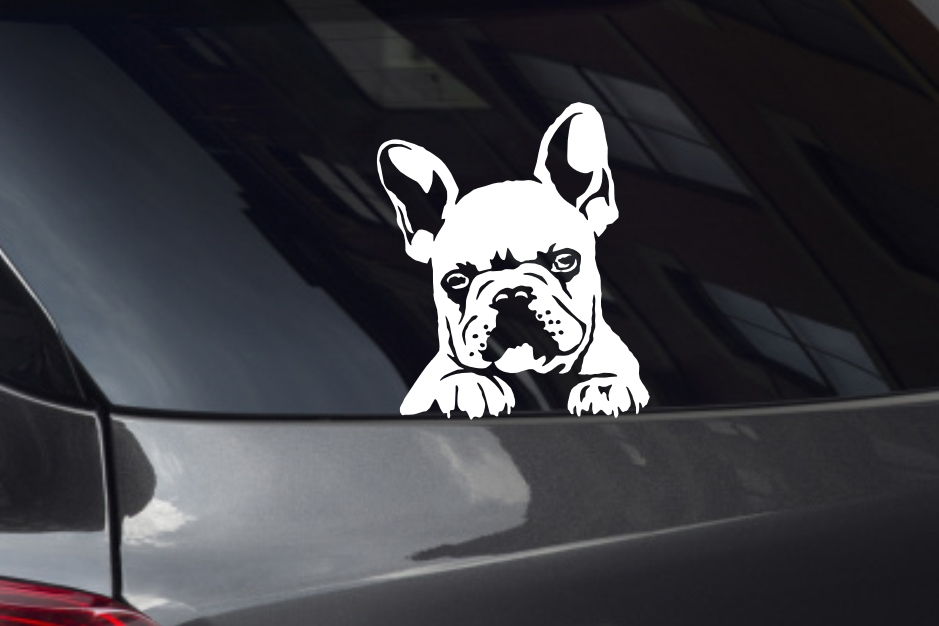 French Bulldog Puppy Looking Out Window Decal