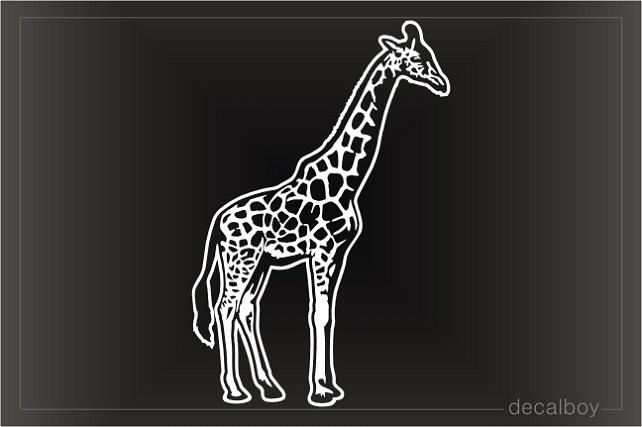 Giraffe Decals Amp Stickers Decalboy