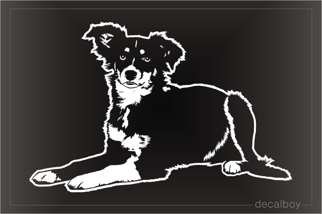 Miniature American Shepherd Decal