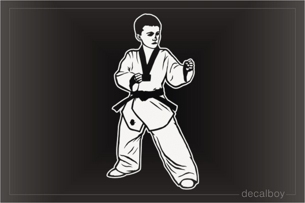 Taekwondo Boy Decal