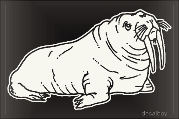 Walrus Window Decal